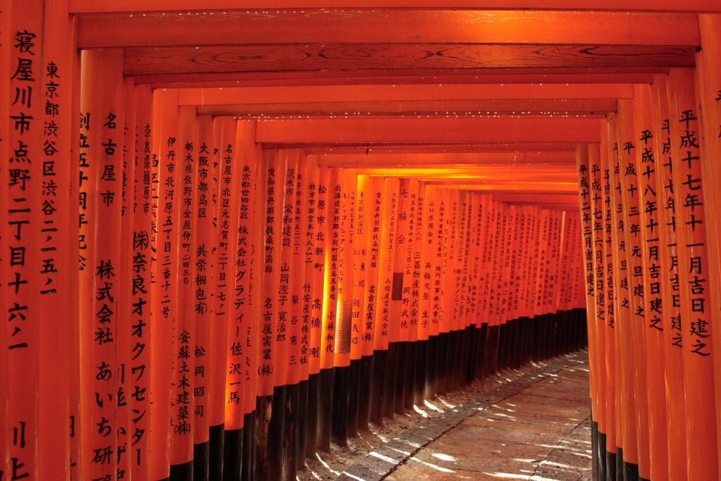 Tempat wisata di kyoto fushimi inari