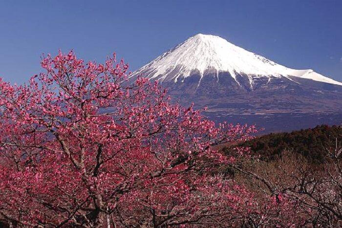 Negara Jepang Gunung Fuji