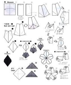 www.daiyoshiko.com