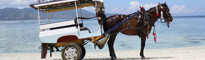 Objek wisata Gili Trawangan di Lombok