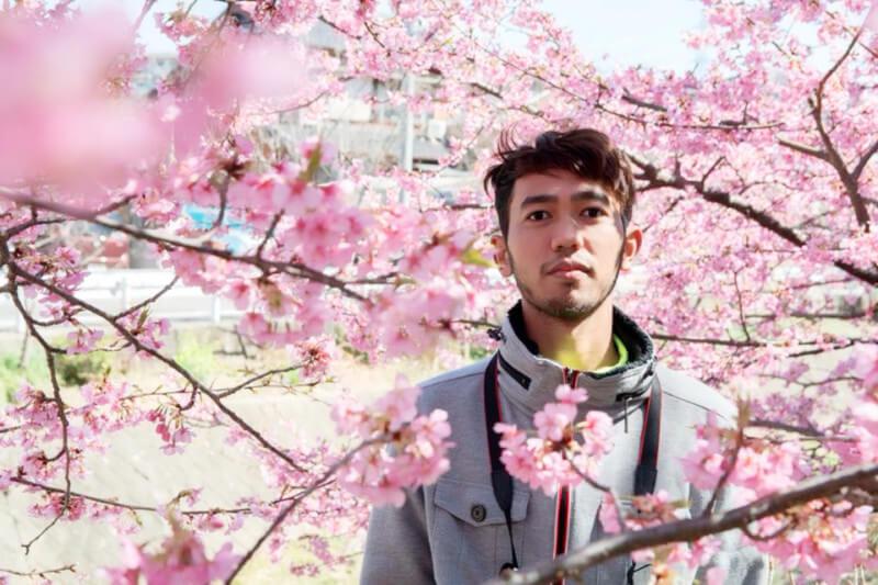 Bunga Sakura 2016