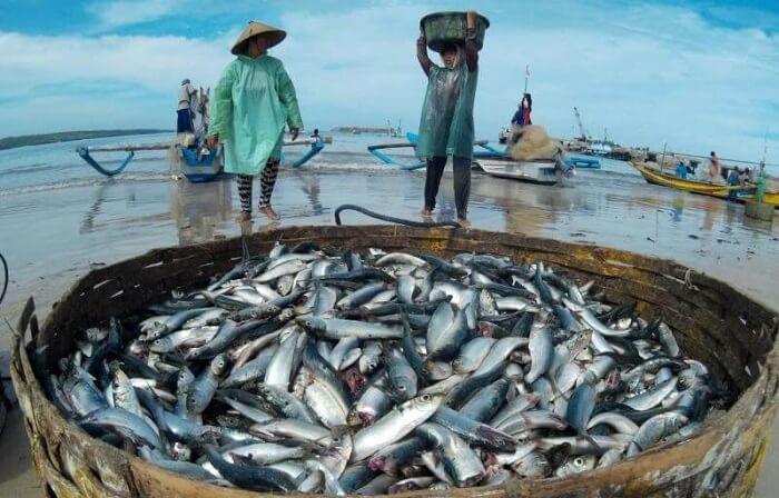 cerita motivasi hidup nelayan