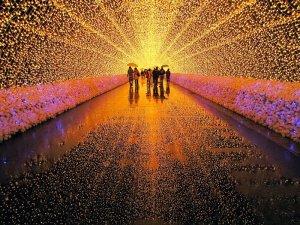 Musim Salju di Jepang Winter Illumination