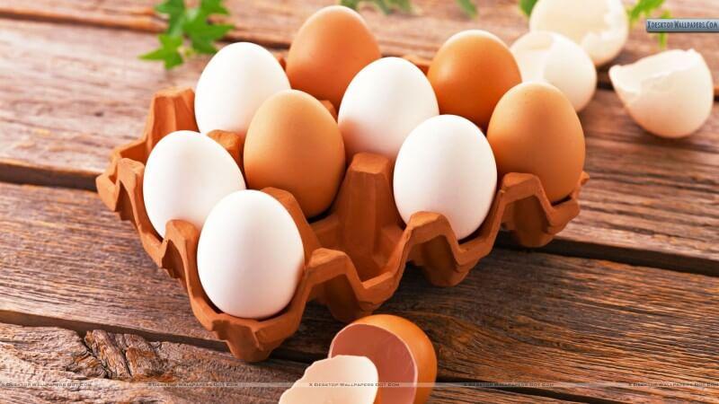 Makanan Penyubur Kandungan Telur