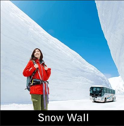 Paket Liburan ke Jepang Tateyama Wall